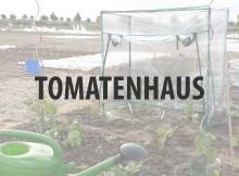 Tomatenhaus kaufen
