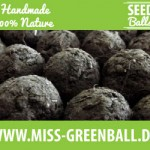 Seedballs by Miss Greenball
